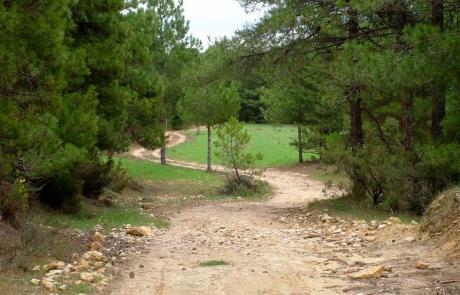 Ruta 12 Prado Redondo - Tinada de la Losa - Prado Redondo
