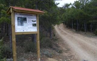 Ruta de Mingarnao