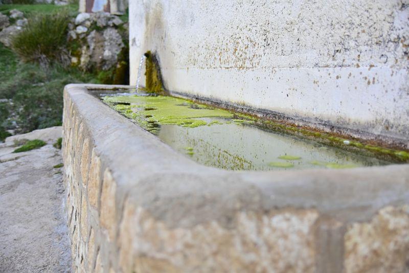 Fuente de Camarillas (La Dehesa)